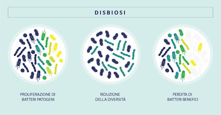 I diversi tipi di squilibrio del microbiota portano alla disbiosi.